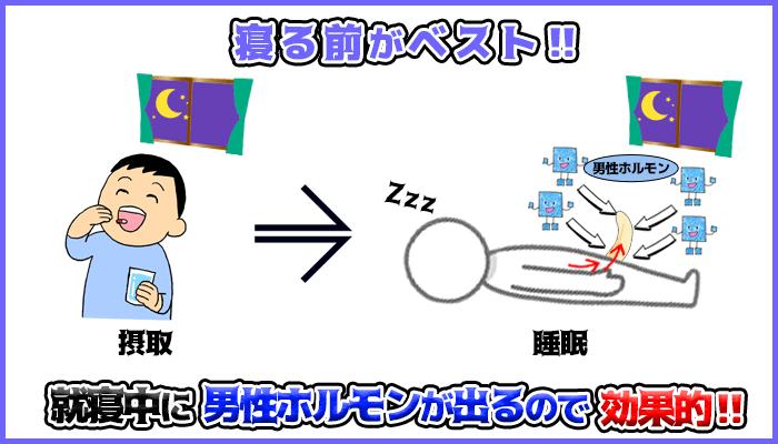 亜鉛の摂取するタイミングは就寝前がベストの図