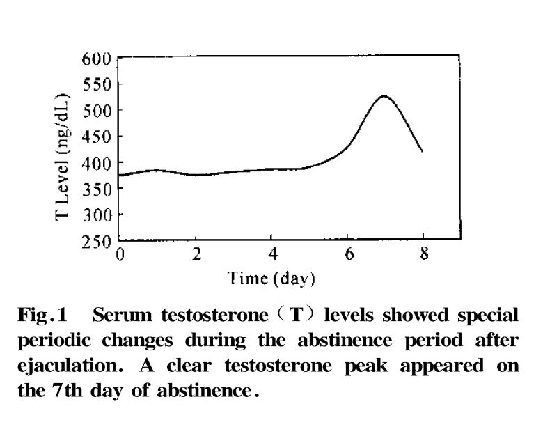 男性ホルモンの日数による変化