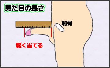 ペニスサイズの見た目の長さの測り方の図