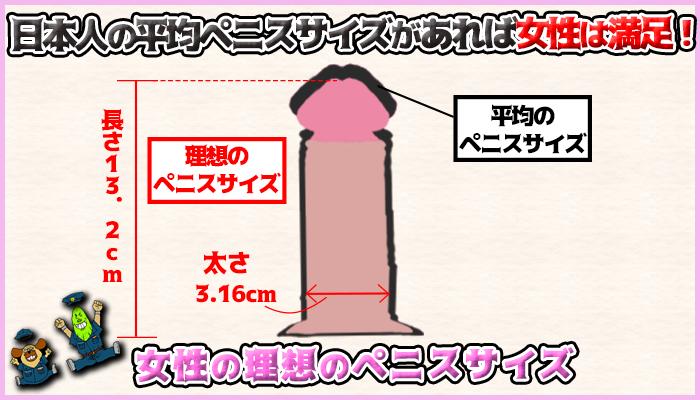 女性の理想のペニスサイズは日本人の平均ペニスサイズの図