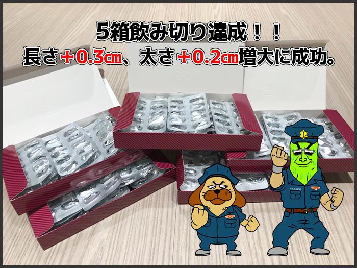5箱飲み切り達成!!長さ+0.4㎝、太さ+0.2㎝増大!!